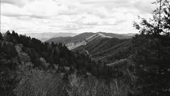 untitled (Boogey Man) Tags: modernart contemporaryart digital diy tennessee mountains naturephotography blackandwhite photographer photography photo