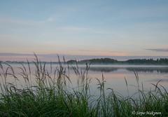 Aamu Kyrösjärvellä 6 (sirpamak) Tags: finland suomi lake järvi auringonnousu sunrise early morning landscape järvimaisema kyrösjärvi ikaalinen nikond750