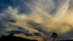 Left Side Parhelion (Sundog) 19:35 BST 14/07/17 (Spicey_Spiney) Tags: sundog parhelia atmosphericoptics opticaleffects cirrusclouds