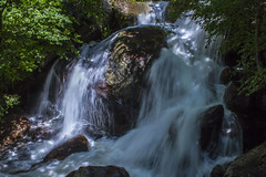 Embrace (Milena Galizzi) Tags: water river mountain wood forest nature waterfall trees motion long exposure paradise val brembana