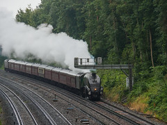 A4 Pacific Steam near Woking-E7260146 (tony.rummery) Tags: 60009 a4 catherdralexpress em10 gresley heritage lner locomotive mft microfourthirds omd olympus pacific railroad railway southwesttrains steam trains unionofsouthafrica woking england unitedkingdom gb