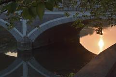 Under the Bridge (Oliver MK) Tags: under bridge kanazawa japan asia photo photography amateur nikon d5500 travel ishikawa prefecture にほん 日本 石川 石川県 金沢 金沢市 橋 reflection impression