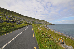 Into the West (mcgrath.dominic) Tags: wildflowers fanore theburren coclare