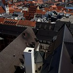 Rooftops thumbnail