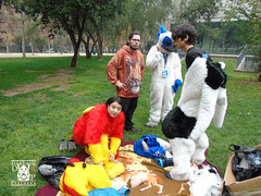 DSC00160 (Thanriu) Tags: fursuit chile meet junta furry santiago friends amigos canid monster avian ave canino monstruo badge angel dragon parrot artic wolf yerik dog