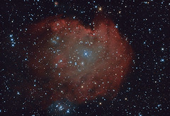 Monkey Head nebula (amsptdy) Tags: ngc2174 nebula monkeyheadnebula space astronomy astrophotography