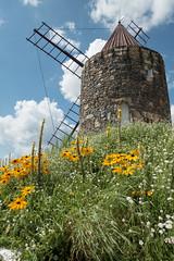 French windmill (Teelicht) Tags: deutschland germany gifhorn lowersaxony mühlenmuseum niedersachsen windmühle windmill windmillmuseum