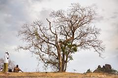 Hiking (Irene Becker) Tags: africa arewa imagesofnigeria kaduna kadunastate nigeria nigerianimages nigerianphotos northnigeria westafrica northernnigeria