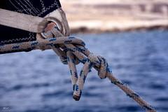Noeud de chaise (S.pT) Tags: noeud sailboat sail sea merméditerranée bleu blue