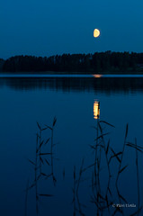 Nightscape (grus_p) Tags: blue nightscape moon moonlight sky lake water silhouette night calmness silence beautyofnature luminanceboréale finland july