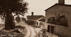 landscape (Exedra Lyric) Tags:
