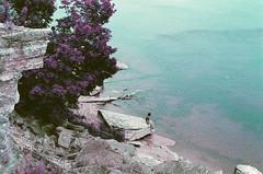 leetse klints pakājē (inmno) Tags: lomochrome purple lomography aerochrome minolta ishootfilm