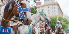 ajbaxter170715-0450 (Calgary Stampede Images) Tags: calgarystampede 2017 downtownattractionscommittee ajbaxter allanbaxter