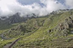 DSC_1034c copy1   on the way to Macchu Pichu Peru (camera30f) Tags: train route macchu pichu andes mountains peru latin america incas clouds white vegetation green blue skiies citadel day daylight sunny weather scenery