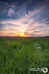 5992 (Nico Kehder) Tags: outside outdoor landscape feld field sun wiese sunset sky himmel clouds woken yellow blue nature natur