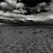 Infinite Prairie