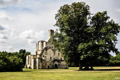 Abbaye Royale de Chaalis (nadineblanchard) Tags: ruines architcture pierres