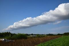 20170720_003_2 (まさちゃん) Tags: 雲 空 プリンスペペ