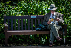 What's On (a man of constant sorrow) Tags: pipe man park winchester reading smoking bench england