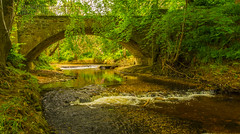 Claypot Bridge (williamrandle) Tags: claypotbridge cullen banffshire scotland northeastscotland uk summer 2017 holidays bridge structure arch stone river burn water rapids trees reflections outdoors landscape serene peaceful beauty shade shadows sunshine riverbank nikon d7100 sigma1835f18art