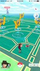 "Pokestops at GO Fest • <a style=""font-size:0.8em;"" href=""http://www.flickr.com/photos/109120354@N07/36068491326/"" target=""_blank"">View on Flickr</a>"