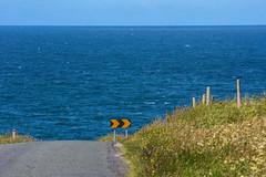 Right turn advised (A Costigan) Tags: sligo sign signage atlantic road rural coast coastal shoreline wildatlanticway ireland irish outdoor canon eos sea ocean water waterscape