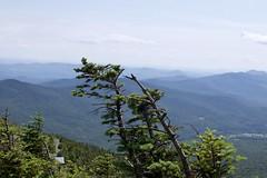 Jay Peak Vermont (jessebliss) Tags: pinetree vermont jaypeak mountain landscape