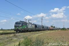 LTE: BR 193 216, Nymburk (CZ) (Alexandre Zanello) Tags: vectron siemens br193 lte ell european locomotive leasing nymburk vtg wascosa tchéquie eurosprinter