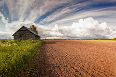 Barn By The Field (k009034) Tags: 500px field sky landscape soil nature travel clouds old tree summer building fields countryside cloud crop agriculture panoramic barn rural farm outdoors horizontal wooden daylight farming no people remote farmhouse cropland barns person finland tranquil scene copy space oulainen matkaniva teamcanon