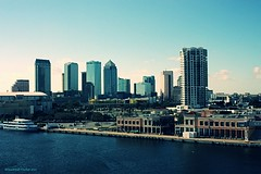 You Are So Beautiful to Me (Bella Bugiarda) Tags: tampa city cityscape skyline architecture urban downtown