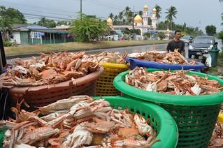nakhon si thammarat - thailande 57