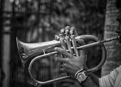 Bossa nova (Mister Blur) Tags: musician jazz happy bokeh monochrome thursday trumpet bossanova hotel rosasxocolate mérida yucatán méxico depthoffield nikon d7100