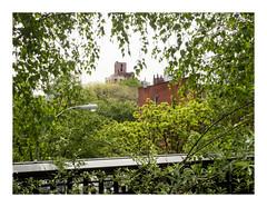 160510_0842_160510 101524_oly_S1_New York (A Is To B As B Is To C) Tags: aistobasbistoc usa newyork newyorkstate roadtrip travel olympus stylus1s manhattan highline w22ndst urbanjungle streetlight green tree view city cityscape nature framed clementclarkemoorepark