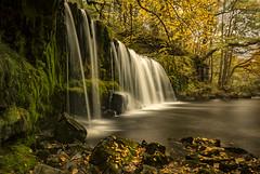Under the falls (cliveg004) Tags: sgwdddwliuchaf waterfallcountry wales brecon waterfall le autumn fall falls river nikon d5200