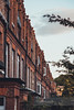 A row in London (dilocom) Tags: terracedhouses london redbrick