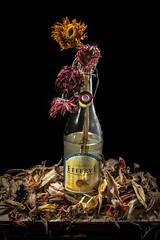 Bottle in bloom / Botella en flor (Carlos M.C.) Tags: wood still efferve flower life drawer cajon petals dead