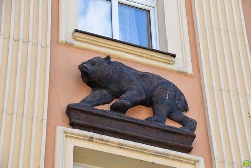Tenement under a black bear