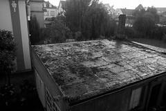pluie… (JJ_REY) Tags: pluie rain cour backyard nikon d700 28mmf28ais alsace france