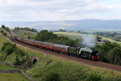 "60103 ""FLYING SCOTSMAN"" (Cumberland Patriot) Tags: lner london north eastern railway a3 462 pacific sir nigel gresley 4472 60103 103 flying scotsman steam loco locomotive engine 1z46 the waverley birkett common sc settle and carlisle rail line passenger charter train railtour"