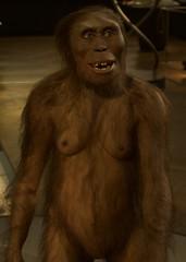 Primate (Mount Fuji Man) Tags: vienna austria 2017 wien thecityofdreams bundesland unedited nophotoshop
