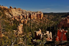 Another View Of Bryce Canyon National Park (Susan Roehl) Tags: nationalparkstour2017 brycecanyonnationalpark utah paunsauguntplateau usa hoodoos uniquegeology rockformations distinctgeologicalstructures highestelevation9000feet settledbymormons ebenezerbryce outdoors 35835acres photographedfrominspirationpoint sueroehl panasonic lumixdmcgh4 12x35mmlens handheld landscape becameaparkin1923 ngc