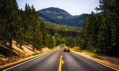 Cruisin' Tahoe (Darren LoPrinzi) Tags: canon 5d canon5d miii laketahoe california ca nevada nv road street car redcar sportscar corvette west westcoast trees evergreen evergreens tahoe summer summertime windingroad curve curvey