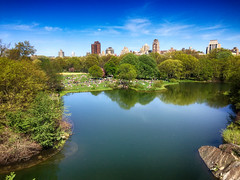 Central Park in New York City (` Toshio ') Tags: toshio nyc manhattan newyorkcity newyork america usa lake trees park city skyline water turtlepond iphone picnic reflections midtown southlawn