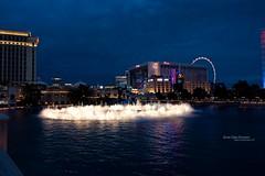 Vegas Baby! (AshlandT) Tags: lasvegas vegas highroller travel cityofsin gambling casinos citylights neon neonlights signs bellagio fountains thebellagio hotels