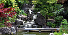 Kyoto Garden, Holland Park, London (andycurrey2) Tags: park garden kyoto pond landscape tree maple waterfall rocks bridge oriental outdoor london colours