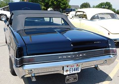 1965 GTO black=3 (THE HALENIZER) Tags: 1965 gto