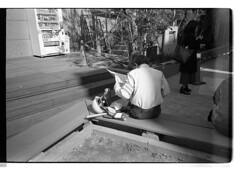 161120 Roll 453 gr1vtmax694 (.Damo.) Tags: 28mmf28 japan japan2016 japannovember2016 roll453 analogue epson epsonv700 film filmisnotdead ilfordrapidfixer ilfostop japanstreetphotography kodak kodak400tmax melbourne ricohgr1v selfdevelopedfilm streetphotography tmax tmaxdeveloper xexportx