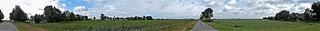 Frysian landscape - panorama view  (N2558)
