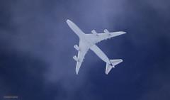 Lufthansa D-ABYT J78A1737_ (M0JRA) Tags: lufthansa dabyt ott sky clouds sun glint altitude height flying jets aircraft planes flight