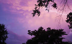 197/365 (Rei_Marie) Tags: 365 project canon rebel sunset sky clouds storm lightning rain pink